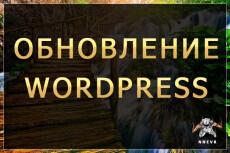 Создам сайт на wordpress с любой темой, установлю необходимые плагины 60 - kwork.ru