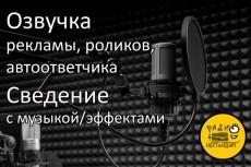 Озвучу рекламу, видеоролик 13 - kwork.ru