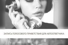 Услуги диктора, работа с аудио для видео 15 - kwork.ru