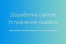 Исправлю ошибки, оптимизирую, настрою, доработаю сайта на Wordpress 4 - kwork.ru