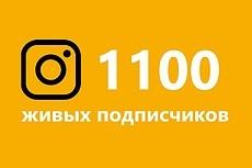 Instagram. 2000 подписчиков 18 - kwork.ru