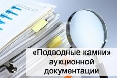 Проверю Вашу заявку на участие в электронном аукционе по 44-ФЗ 4 - kwork.ru