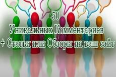1 комментарий в день в течение 30 дней на Ваш сайт, не в соц. сетях 23 - kwork.ru