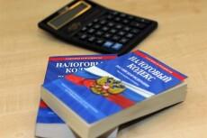 Напишу возражения к акту (решению) налоговой проверки 4 - kwork.ru