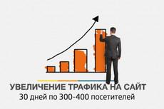 Привлеку 20 000 уникальных посетителей на сайт 16 - kwork.ru