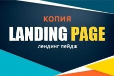 Посажу стильный лендинг на ваш хостинг и заменю тексты 14 - kwork.ru