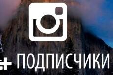 3000 Качественных Подписчиков Instagram плюс Лайки 10 - kwork.ru