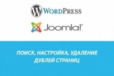 Установка, перенос сайта на хостинг. CMS Wordpress, Opencart, Joomla 17 - kwork.ru