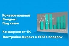 Лендинг пейдж под ключ с настройкой форм и установкой на хостинг 8 - kwork.ru