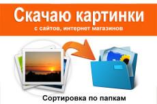Парсинг интернет-магазинов, сайтов, сбор данных, импорт товаров 3 - kwork.ru