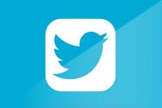 Комплексное продвижение в Твиттер - 50 подписчиков 5 - kwork.ru