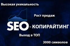 Бизнес SEO и LSI копирайтинг для выхода в ТОП 8 - kwork.ru
