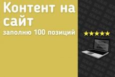 Наполню контент 20 - kwork.ru
