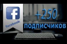 Добавлю 500 активных русскоязычных подписчиков на паблик в Facebook 2 - kwork.ru