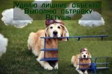 Настройка Яндекс Директ 28 - kwork.ru