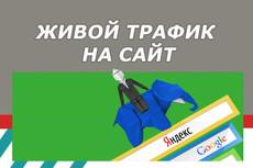 Сделаю вам 10 000 уникальных посетителей на ваш сайт/группу + доп. скидки 5 - kwork.ru