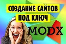 Продающий Landing Page 40 - kwork.ru