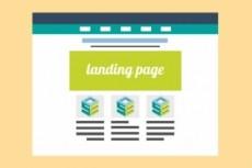 Скопирую любой лендинг, одностраничный сайт за 2 часа 23 - kwork.ru
