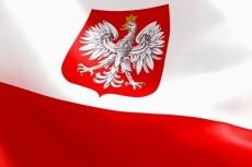Переведу с польского 23 - kwork.ru