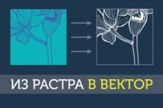 Переведу Ваш логотип, узор, эмблему по эскизам, из растра в вектор 29 - kwork.ru