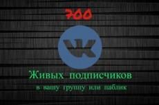 300 подписчиков на паблик Вконтакте, без ботов и программ 15 - kwork.ru