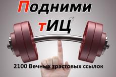 +888 трастовых ссылок на Ваш сайт с ТИЦ от 10 до 425 9 - kwork.ru