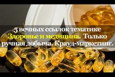 13 ВЕЧНЫХ ссылок с ТОПфорумов страны. Ручная работа 7 - kwork.ru