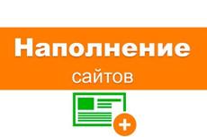 Наполнение сайта товарами 19 - kwork.ru