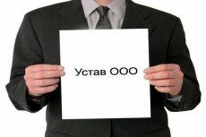 Составлю проект Устава для Вашего предприятия (ООО) 8 - kwork.ru