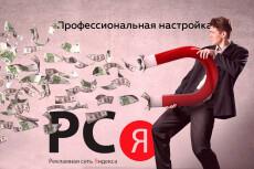 Настрою  кампанию в Яндекс Директ 22 - kwork.ru