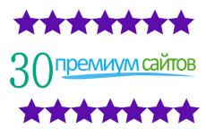 Бизнес Идеи 30 премиум сайтов на wordpress + установка и бонусы 14 - kwork.ru