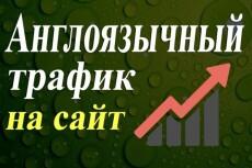 Англоязычные посетители от 60 до 100 в сутки в течение 20 дней 3 - kwork.ru