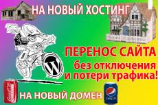 Перенесу ваш сайт на новый домен или хостинг 26 - kwork.ru