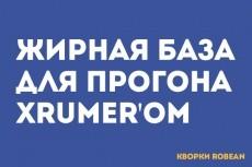 Прогон сайта Хрумером. Ссылочная масса с разнообразных доноров 19 - kwork.ru