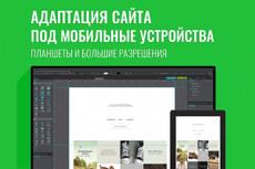 Сверстаю для вас продающий лендинг с нуля 21 - kwork.ru