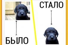 Сделаю 10 вариантов грамот и дипломов 14 - kwork.ru