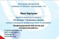 Установлю opencart + адаптивный дизайн 12 - kwork.ru