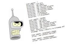 Настройка robots.txt и sitemap 22 - kwork.ru