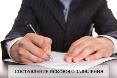Первичная оценка документов по судебному делу, составление иска 19 - kwork.ru