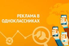 Сертифицированная настройка контекстной рекламы в Яндекс Директ 18 - kwork.ru