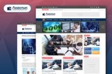3 Premium SEO плагина Wordpress в одном Кворке 21 - kwork.ru