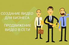 Оригинальное рекламное видео 33 - kwork.ru