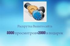 8000 тысяч просмотров для вашего сайта + 2000 тысячи в подарок 19 - kwork.ru
