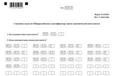 Заявление для госрегистрации в налоговых органах 5 - kwork.ru