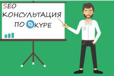 Полный анализ вашего сайта 39 - kwork.ru