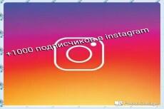 3000 Качественных Подписчиков Instagram плюс Лайки 23 - kwork.ru