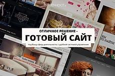 Бизнес Идеи 30 премиум сайтов на wordpress + установка и бонусы 11 - kwork.ru