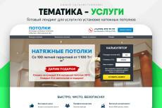 Скопировать Landing page, одностраничный сайт, посадочную страницу 226 - kwork.ru