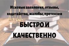 Составлю иски, претензии, заявления, жалобы, отзывы и т. д 7 - kwork.ru