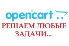 Уникальная SEO оптимизация вашего сайта OpenCart -ocStore 6 - kwork.ru